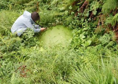 VIMACT – Ação Climática Vimaranense pela redução da pegada ecológica